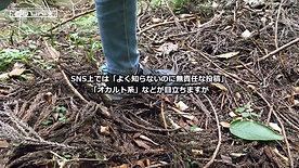 DD UNIT SEARCH TIPS 捜索・情報提供のヒント(小倉美咲さん)