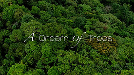 Dream of Trees -TRAILER