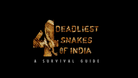 4 Deadliest Snakes of India Trailer