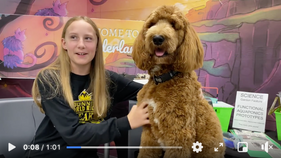 Toby, the Therapy Dog