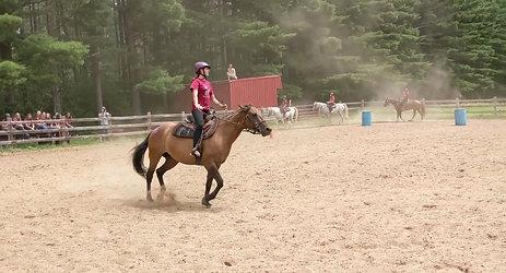 Equestrian 3 Showdeo