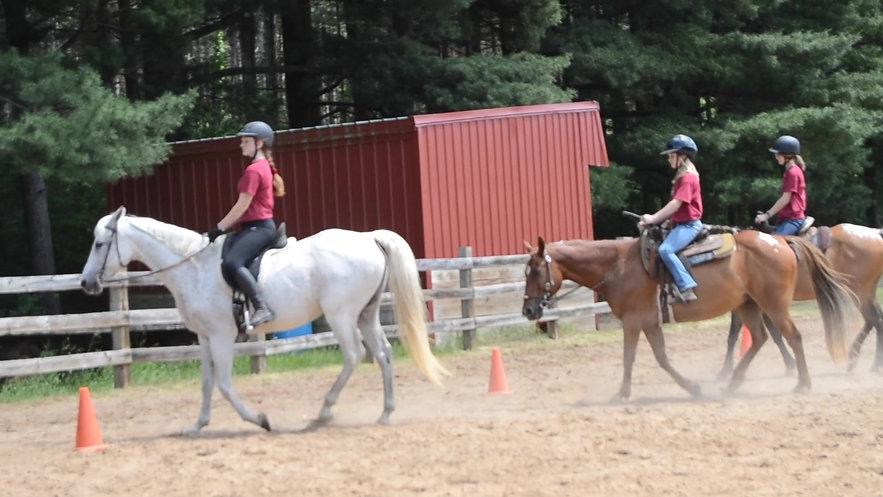 Equestrian 1 Showdeo