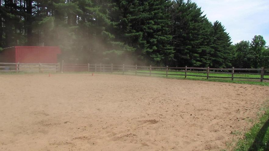 Equestrian 2 Showdeo