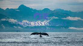 Princess Cruises - Alaska