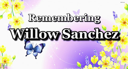 UPCOMING Livestream 5pm PST - Willow Sanchez Memorial June 11th, 2021