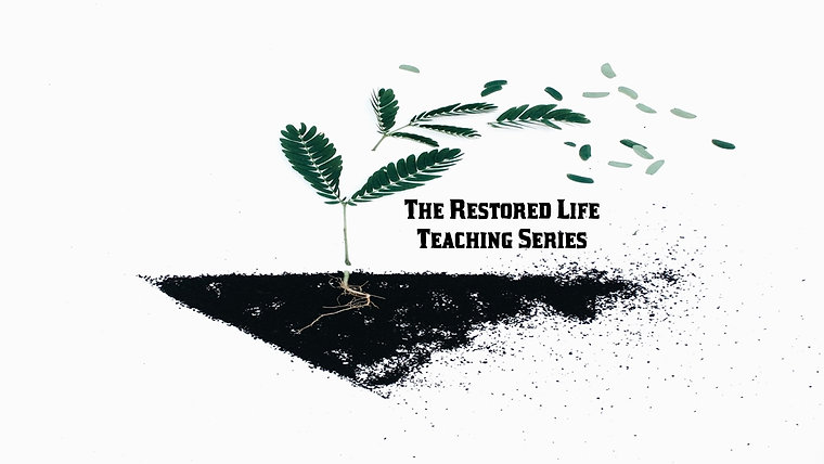 The Restored Life Module 1 Sessions 1-4