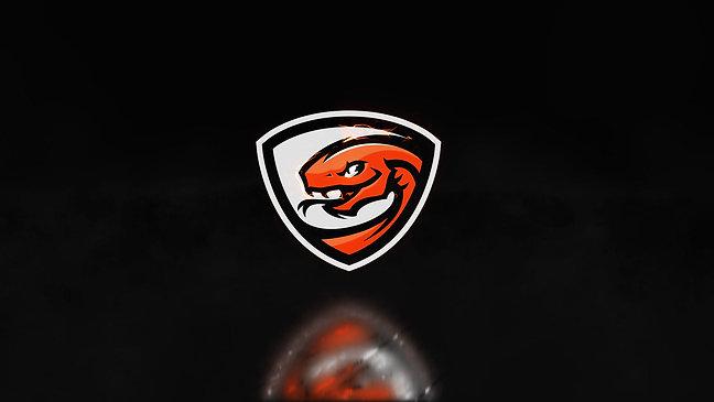 Boomslangg - Logo Animation