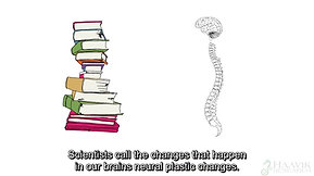 Your Spine Effects Brain Function