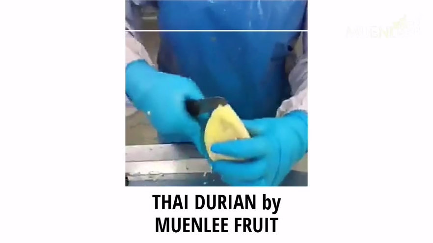 Durian Factory