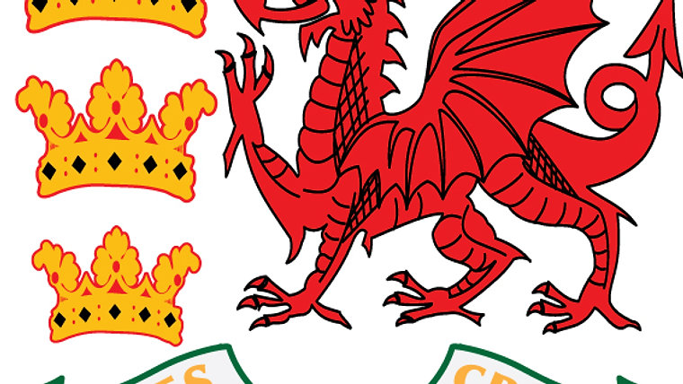 Wales Senior Cricket