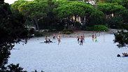 Beach Volley - 921
