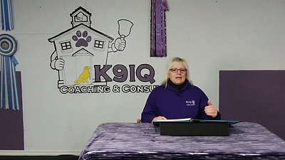 ALL STAR Pet Pup - K9IQ Introduction