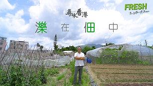 FRESH Feature Story (FRESH 新鮮生活 尋味香港系列)