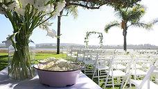 Dane & Morgan's Wedding Video