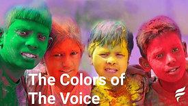 Los Colores de La Voz