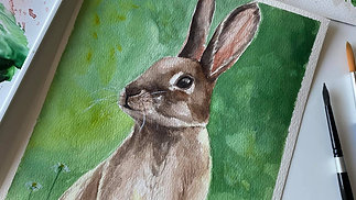 Paint a Rabbit with Watercolour (Lesson 3)