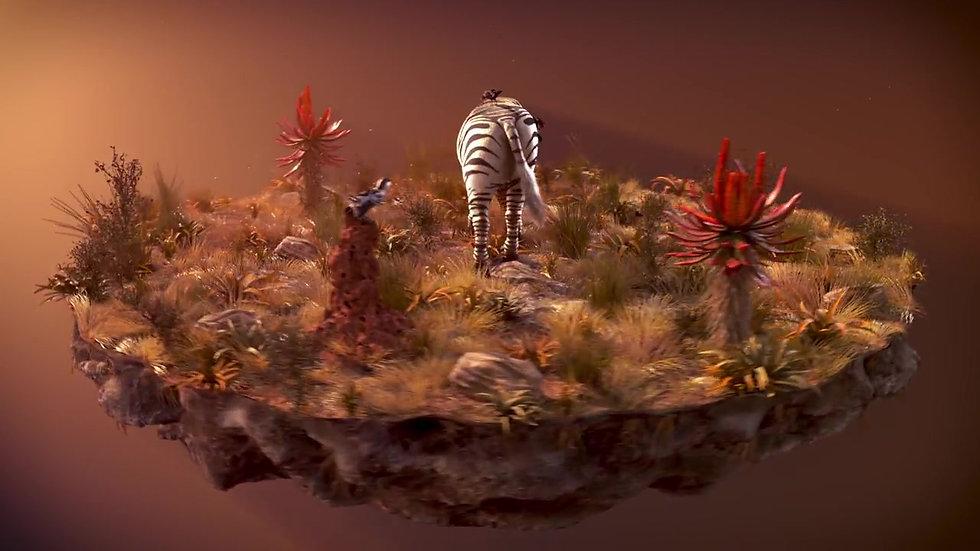 DSTV Zebra turntable