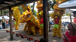 Lion Dance - Spring Festival (Chinese New Year)