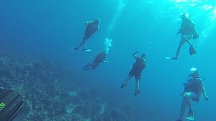 The Cayman Scuba Team