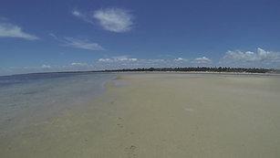 Low Tide Adventures in Vilankulo