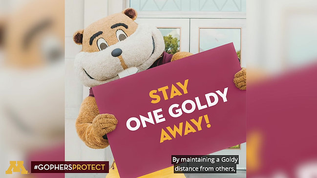Gophers Protect