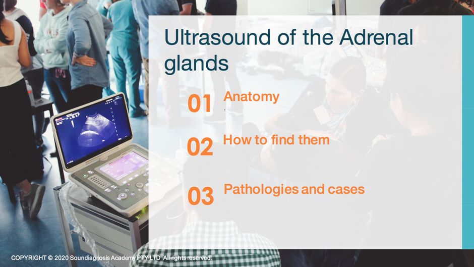 Ultrasound of the Adrenal glands: all the tips and cases review.