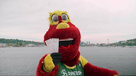 Seattle Storm // Mobile Ticket Tutorial