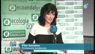 Espacio Plural (Canal Sur TV)