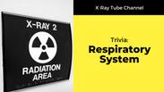 Respiratory System: Trivia