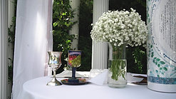 Queens Botanical Garden Outdoor Wedding