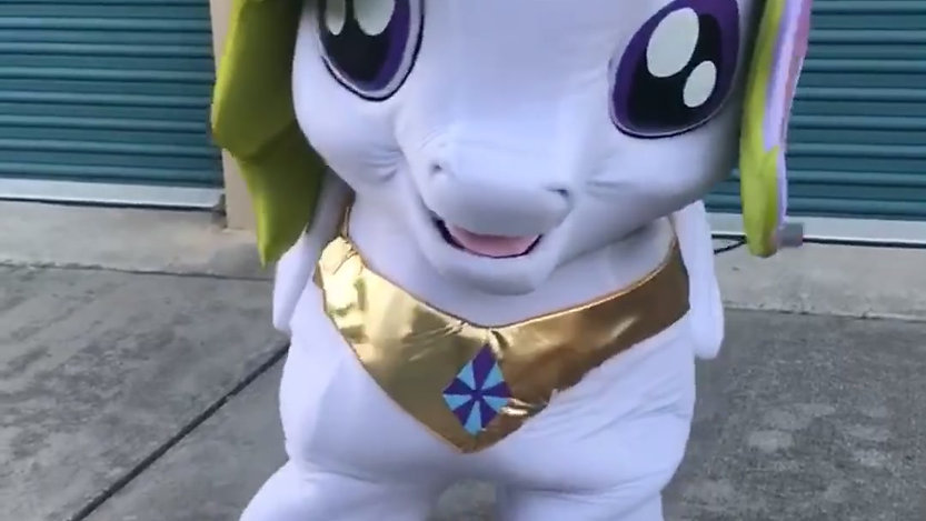My Little Pony Party Character