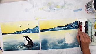 Killer Whale fast