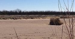 Le Rio Grande à sec