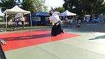 Ludovic Cauderan Aikido Matsukaze Katate dori Tsuki
