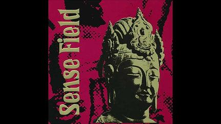 Sense Field - St. Theatre - St Pete, FL ~2004ish