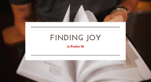 JOY STUDY: Psalm 16