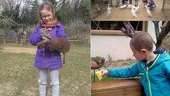 Les petits soigneurs au Zoo d'UPIE