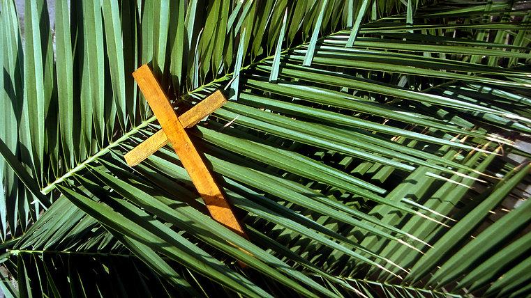 Holy Week Masses - Livestream Videos 2020