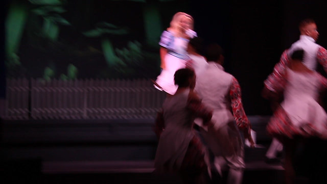 Alice In Wonderland Scenes