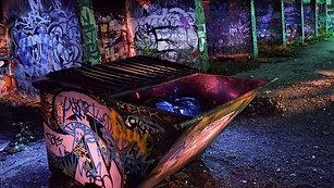 Exploring Dumpster Dive