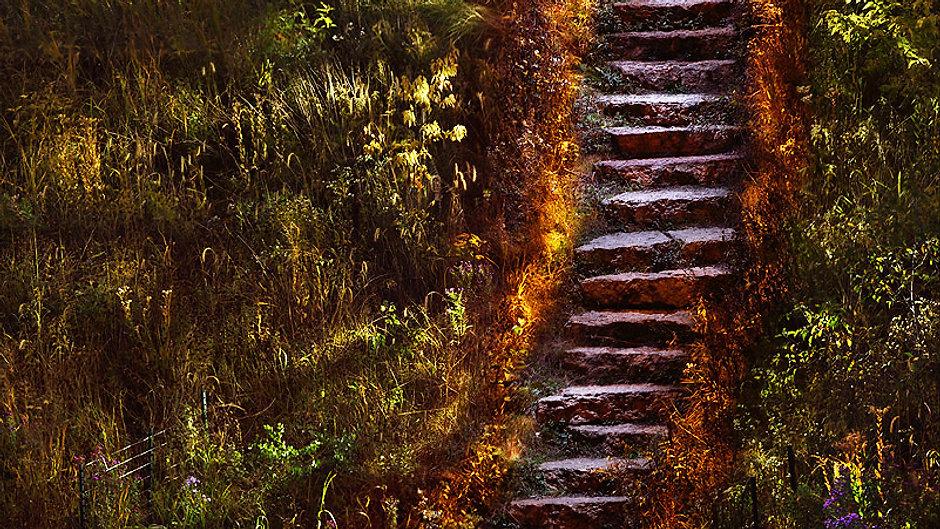 Step through the Light