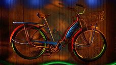 Bicycle Zen