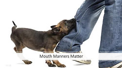 Mouth Manners Matter