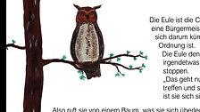 Aufregung im Wunderwald_Mini