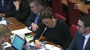 Question à  Mme Dominique Le Guludec en commission des Affaires sociales - 16/11/2017
