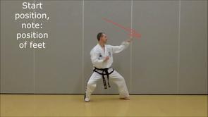 Basic Techniques 4*