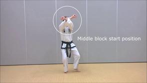Basic techniques 1*