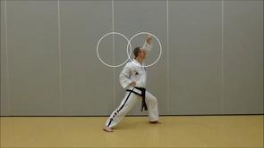 Basic Techniques 2*