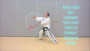 Basic Techniques 3*