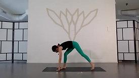 Pratica Vinyasa Flow di 45 minuti apertura anche con Ilaria
